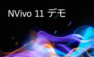 NVivo 11 デモ